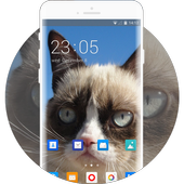Theme for Xolo Play 8X-1100 Grumpy Cat Wallpaper icon