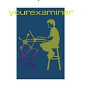 Your Examiner icon