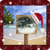 Christmas Photo Frames Collage icon