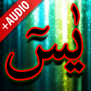 Surah Yaseen + Audio (Offline) APK
