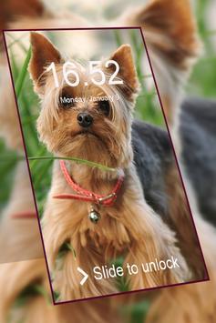 Yorkshire Terrier keypad  lock screen HD wallpaper poster