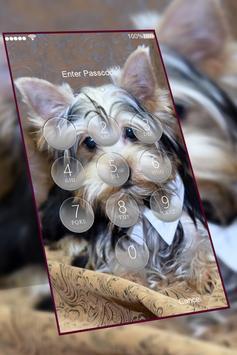 Yorkshire Terrier keypad  lock screen HD wallpaper screenshot 1