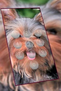 Yorkshire Terrier keypad  lock screen HD wallpaper screenshot 2