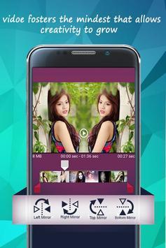Video Mirror poster