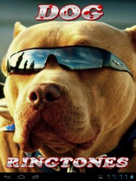 Dog Ringtones and Wallpapers poster