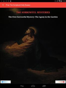 Holy Rosary of the Virgin Mary screenshot 6