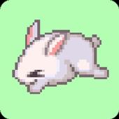 Catch de Bunny icon