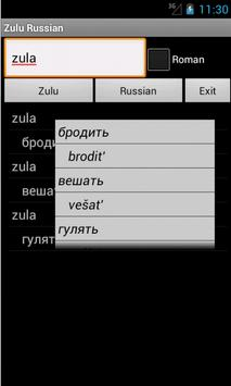 Zulu Russian Dictionary poster