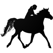 How To Ride A Horse icon