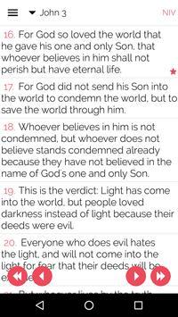 Bible Salvation Jn316 poster