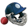 Cricket Captain 2014 icono