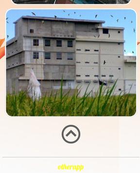 Make a swallow house screenshot 3