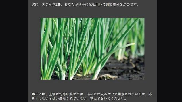 Successful cultivation of leeks screenshot 2