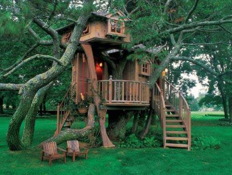 House Model Design Ideas On Trees For Android Apk