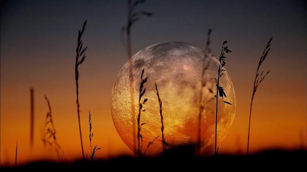 Sunset. Nature Wallpapers screenshot 5