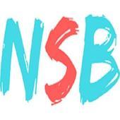 NetSocialBlog App icon