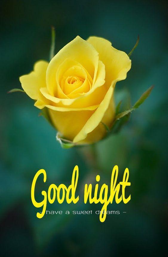 New Good Night Pic