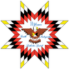 Lakota Country Times icon
