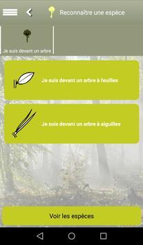 Clés de forêt screenshot 3