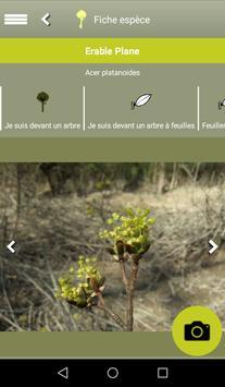 Clés de forêt screenshot 7