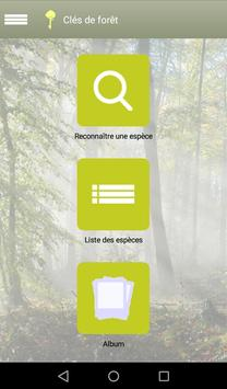 Clés de forêt screenshot 8