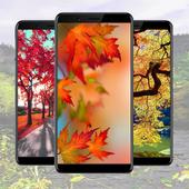 Autumn Wallpaper Ideas icon