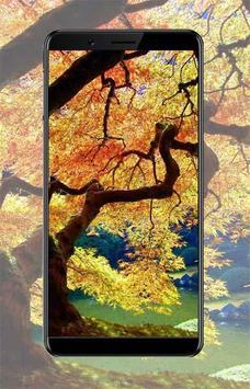 Autumn Wallpaper Ideas poster