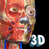 Anatomy Learning - 3D Anatomy Atlas أيقونة