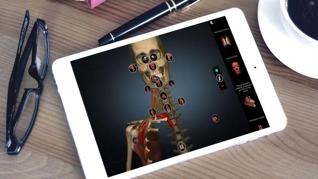 Anatomy Learning 3D - 三维解剖学地图集-解剖和学习解剖学 截图 5
