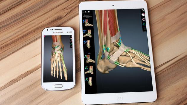 Anatomy Learning 3D - 三维解剖学地图集-解剖和学习解剖学 截图 6