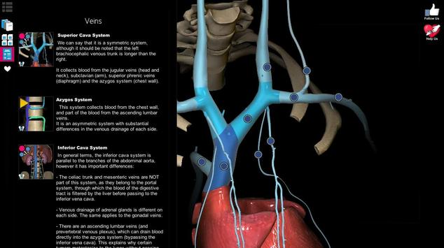 Anatomy Learning - 3D Atlas screenshot 10
