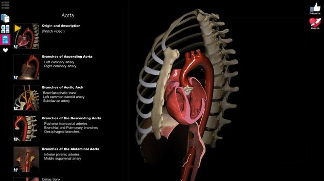 Anatomy Learning 3D - 三维解剖学地图集-解剖和学习解剖学 截图 12