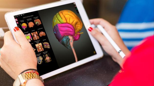 Anatomy Learning 3D - 三维解剖学地图集-解剖和学习解剖学 截图 1