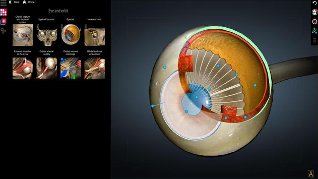 Anatomy Learning - 3D Atlas screenshot 2