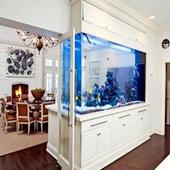 Aquarium Design Ideas icon