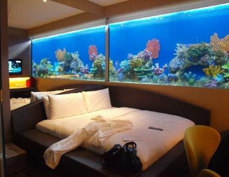 Aquarium Design Ideas screenshot 11