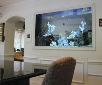 Aquarium Design Ideas screenshot 2