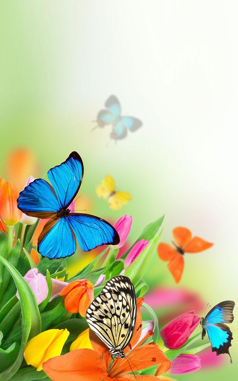 Butterfly Live Wallpaper for Android - APK Download