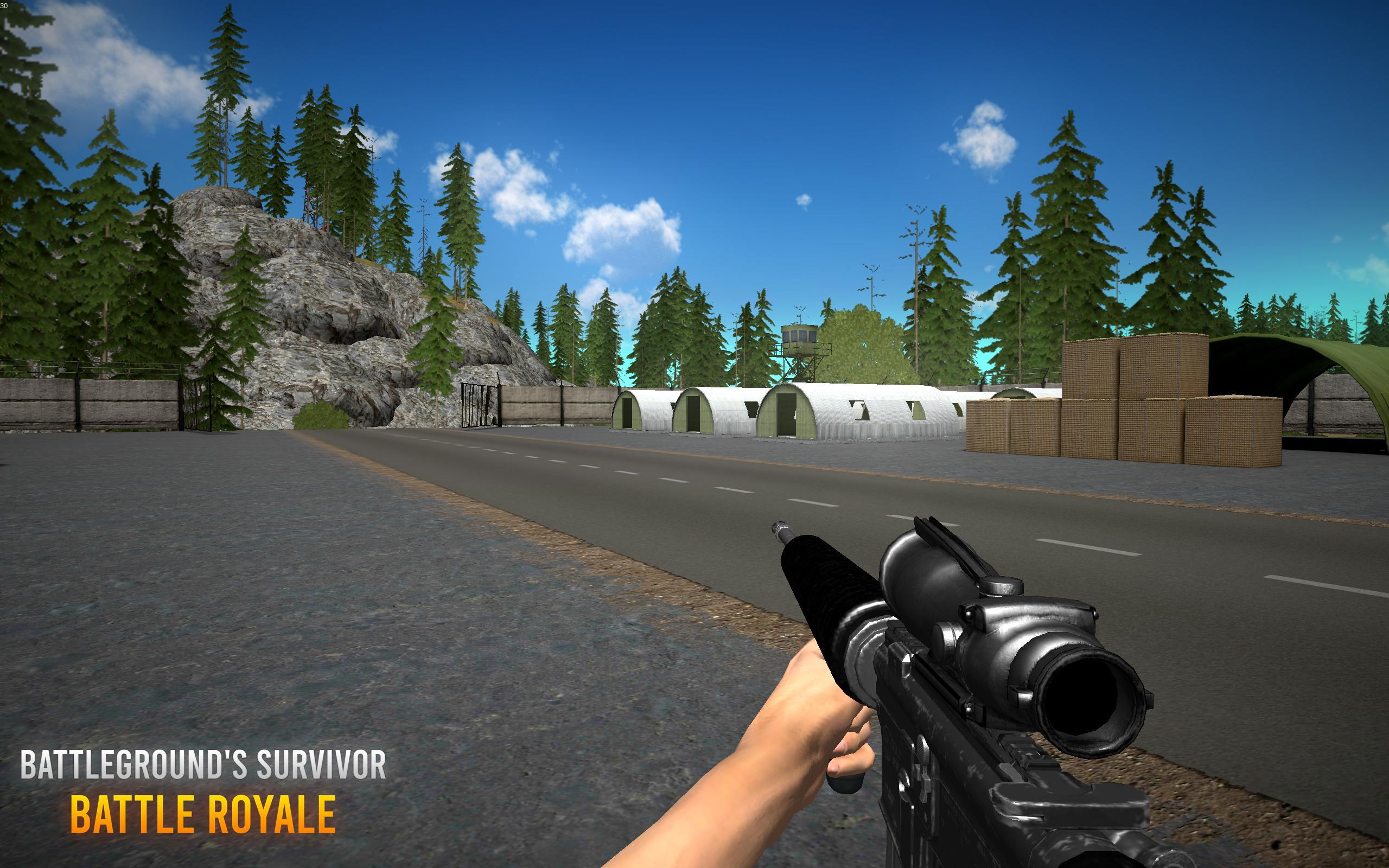 Battleground's Survivor: Battle Royale