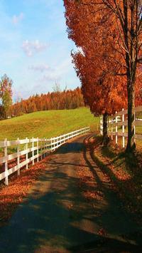 Beautiful Country Wallpaper screenshot 4