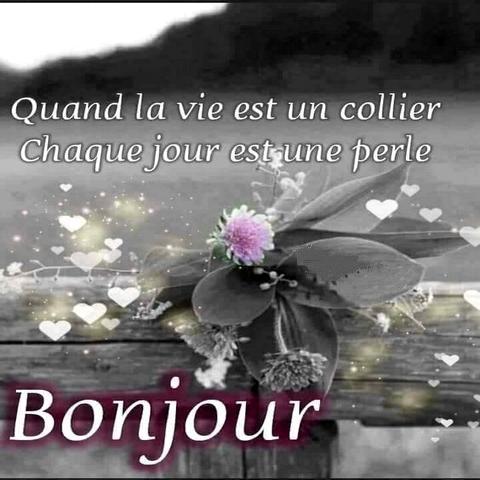 Proverbes Et Citations Mots Sur La Vie Et L Amour For Android Apk Download