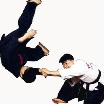 Best Kempo Self Defense Technique screenshot 2