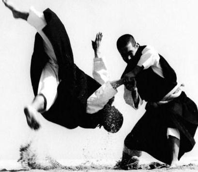 Best Kempo Self Defense Technique screenshot 6