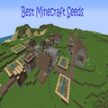 Best Minecraft Seeds