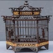 Birdcage idea icon