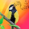 Vogelbeltonen Mp3-icoon