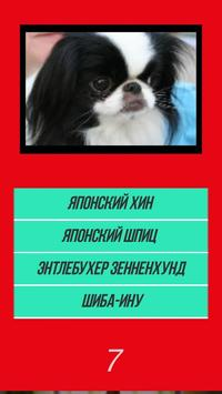 Викторина угадай породу dog собачки по картинке screenshot 1