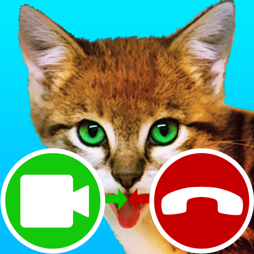 Download Download fake call video cat game                                     fake call video cat game. answer the call for video call with cat sound.                                     TenAppsAndGames                                                                              7.2                                         88 Reviews                                                                                                                                           8 For Android 2021 For Android 2021