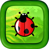 Lady Bird Adventures icon