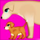 dog pregnancy surgery 2 APK